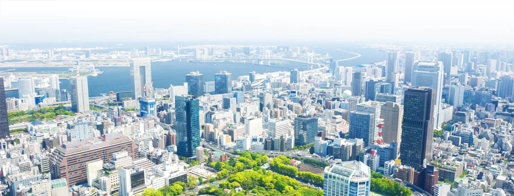 Aerial view of Tokyo city in daytime
